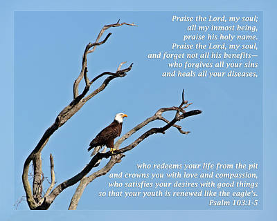 Psalm 103 1-5 Poster by Dawn Currie