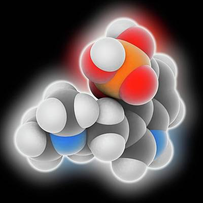 Psilocybine Drug Molecule Poster