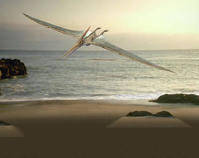 Pteranodon Pterosaur Poster