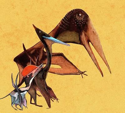 Pterosaur Size Comparison Poster by Nemo Ramjet