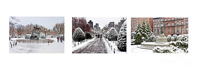 Public Garden Triptych Poster by Thomas Marchessault