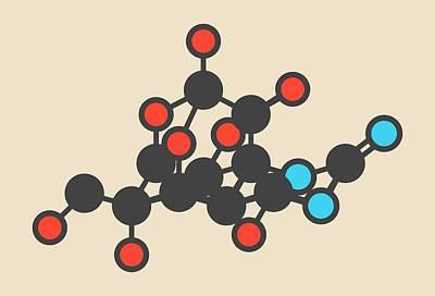 Pufferfish Neurotoxin Molecule Poster by Molekuul