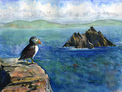 Puffin At Skellig Island Ireland Poster