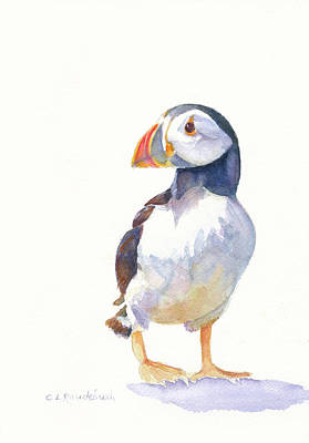 Puffin Poster by Cynthia Roudebush