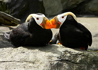 Puffin Friends 2 Poster