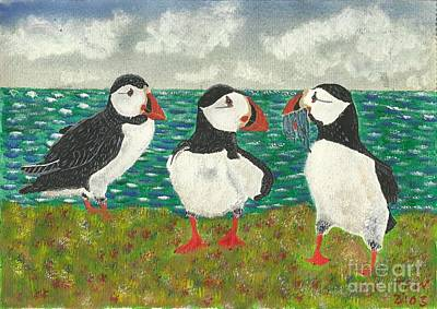 Puffin Island Poster by John Williams