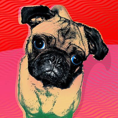 Pug #2 Poster by Ken Surman