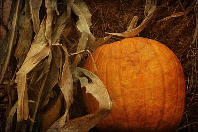 Pumpkin And Cornstalks Poster