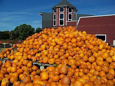 Pumpkin Heaven Poster by David Schneider