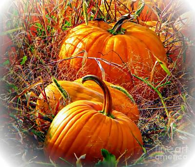 Pumpkin Patch Poster by Michelle Frizzell-Thompson