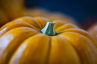 Pumpkin Time Poster by Christi Kraft