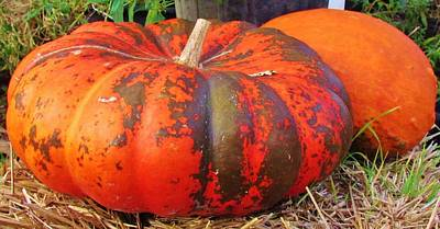 Poster featuring the photograph Pumpkins by Cynthia Guinn