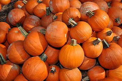 Pumpkins Poster by Diane Lent