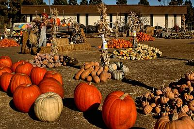 Poster featuring the photograph Pumpkins by Michael Gordon