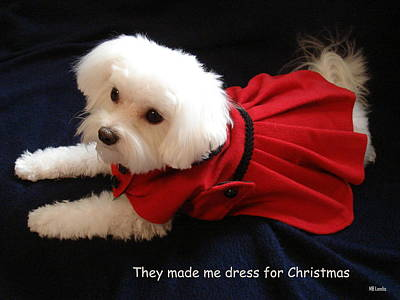 Poster featuring the photograph Puppy Coat by Mary Beth Landis