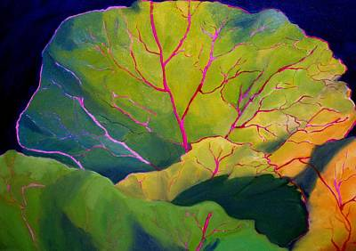 Purple Cabbage At Sunrise Poster by Maria Hunt