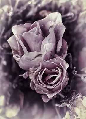 Purple Elegance Poster