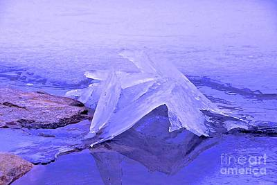 Purple Ice Poster by Randi Shenkman