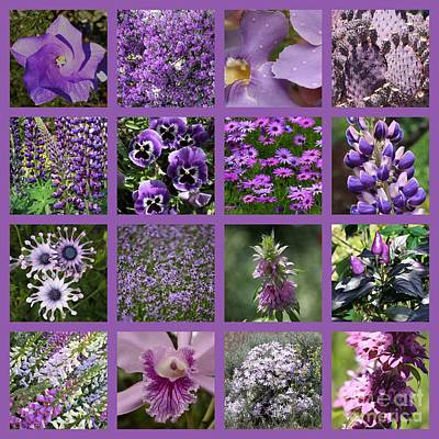 Purple In Nature Collage Poster by Carol Groenen