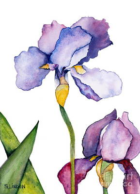 Purple Iris Leaning Toward The Sun Poster by Sandy Linden
