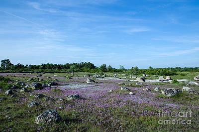 Poster featuring the photograph Purple Landscape by Kennerth and Birgitta Kullman