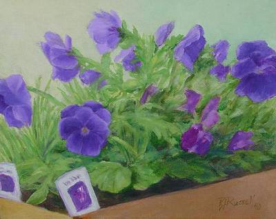 Purple Pansies Colorful Original Oil Painting Flower Garden Art  Poster