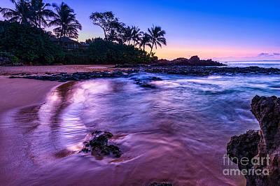 Purple Paradise Poster