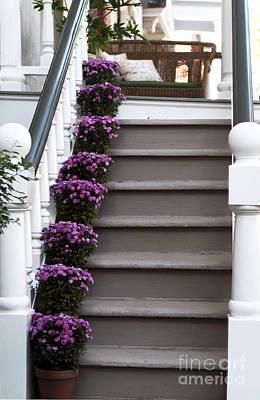 Purple Plants Poster by John Rizzuto