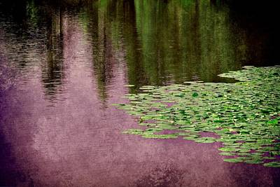 Purple Pond Reflections Poster