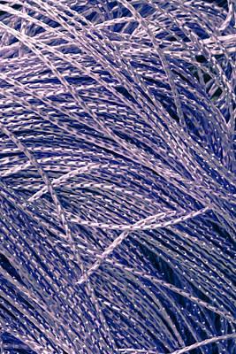 Purple String Poster