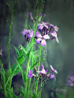 Purple Wildflowers Poster by Zelma Hensel