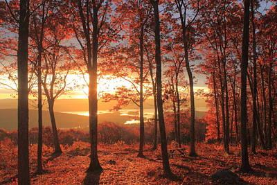 Quabbin Reservoir Oak Foliage Sunrise Poster by John Burk