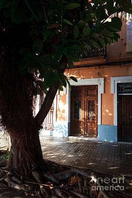 Quaint Spanish House In Shadow Of Old Tree  Poster by Peter Noyce