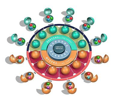 Quark Model Of Particle Physics Poster by Carlos Clarivan