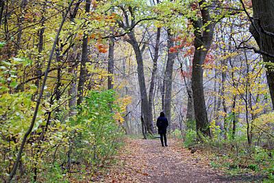 Quiet Walk In The Woods Poster
