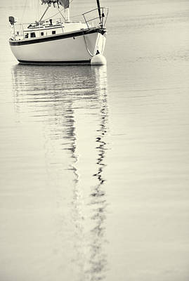 Quiet Water Poster by Karol Livote