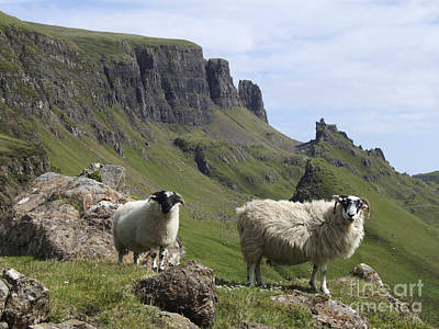 Quiraing - Isle Of Skye Poster by Phil Banks