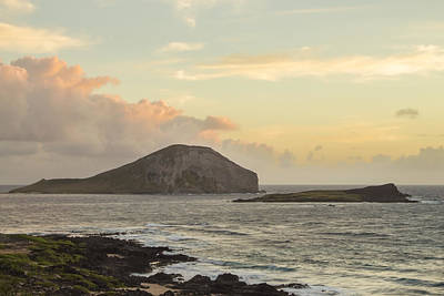 Poster featuring the photograph Rabbit And Turtle Island At Sunrise 1 by Leigh Anne Meeks