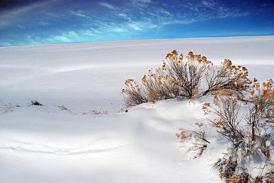 Rabbit Brush Ridge Winter Landscape Poster