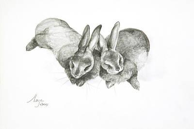 Rabbits Sleeping Poster