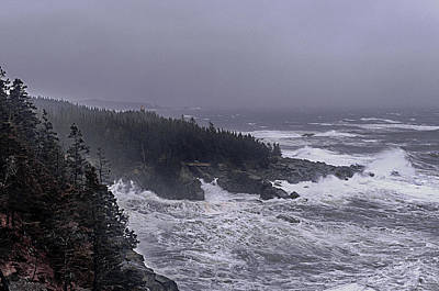 Raging Fury At Quoddy Poster by Marty Saccone