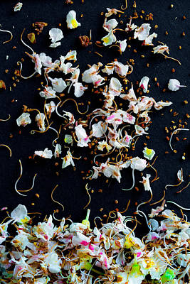 Rain Of Petals Poster