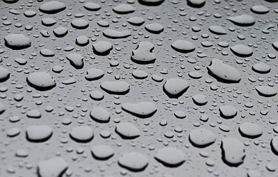 Rain On Sunroof Poster