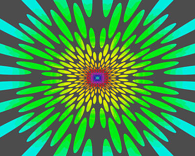 Rainbow Daisy Mandala Green Poster by Paul Ashby