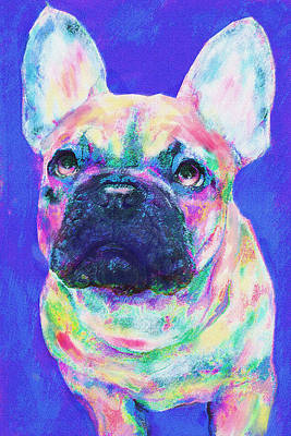 Poster featuring the digital art Rainbow French Bulldog by Jane Schnetlage