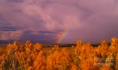 Poster featuring the photograph Rainbow In The Plains by Chris Tarpening