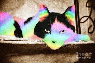 Rainbow Kitty Abstract Poster