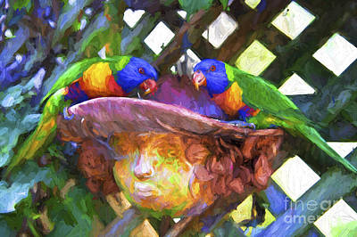 Rainbow Lorikeets In Plant Pot Poster by Avalon Fine Art Photography