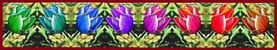 Rainbow Of Tulips Poster