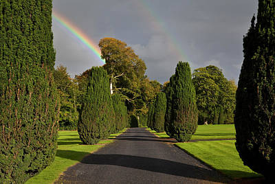 Rainbow Over The Yew Walk In Emo Court Poster by Panoramic Images